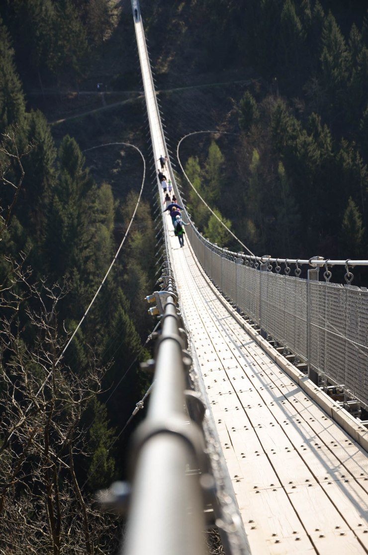 Geierlay Brücke-4