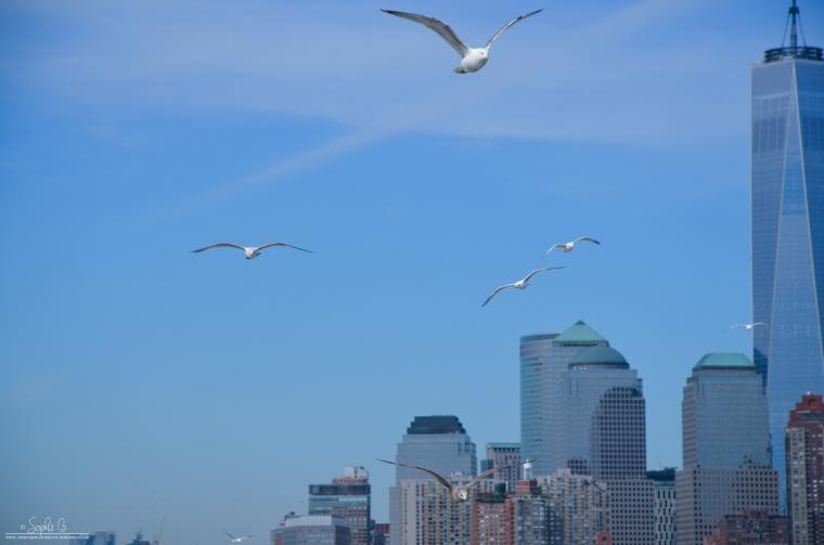 NYC-Staten-Island-Ferry-7