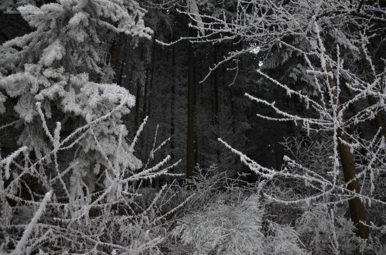 Winter-Travel-1