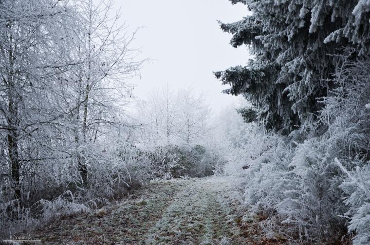 Winter-Travel-2