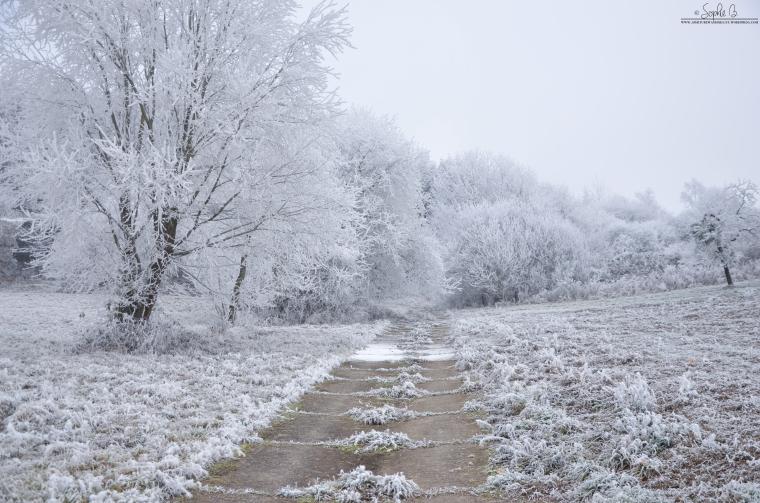 Winter-Travel-6