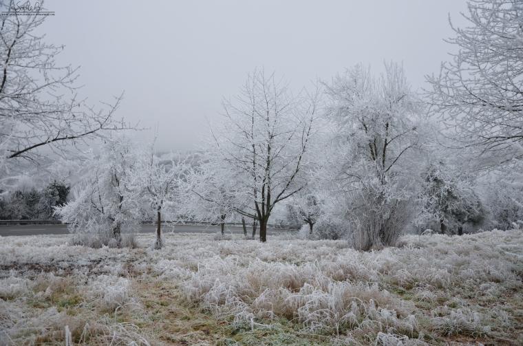 Winter-Travel-7