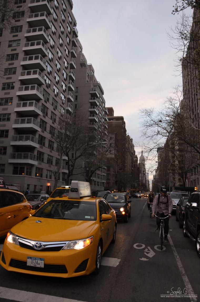 NYC-Ave-1jpg