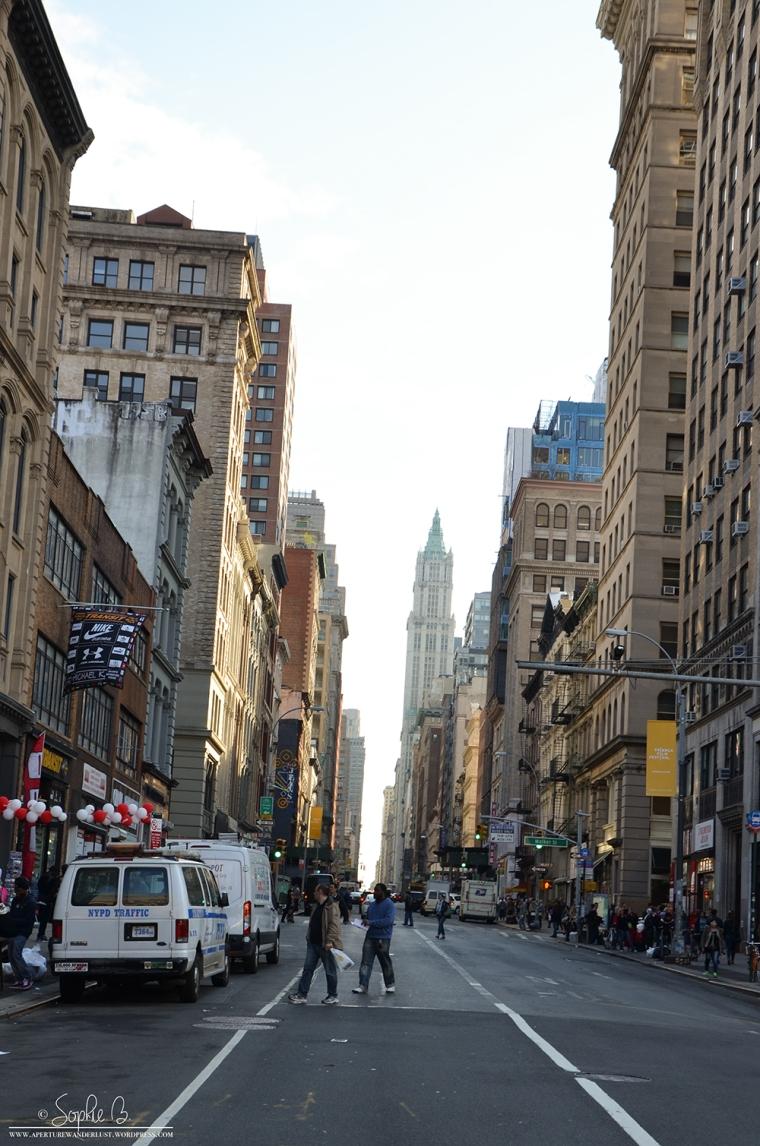 Reasons-NYC-1