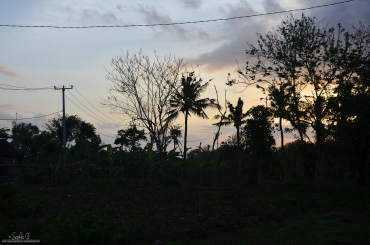 Nusa Lembongan-3