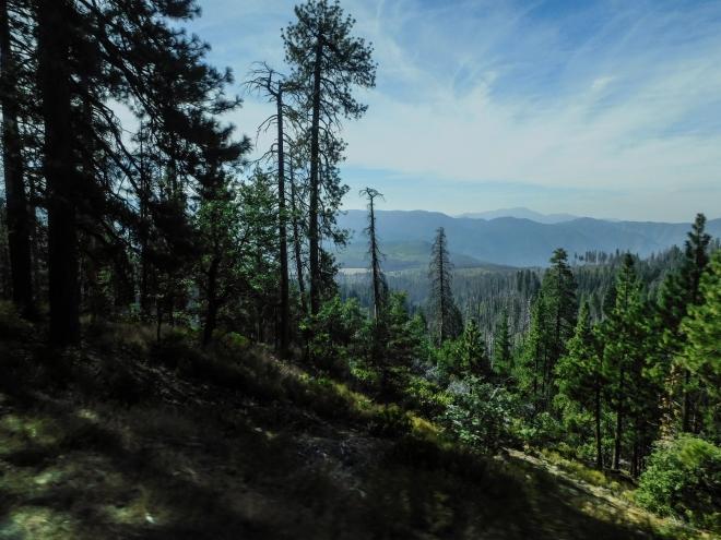 Yosemite-Intro-5