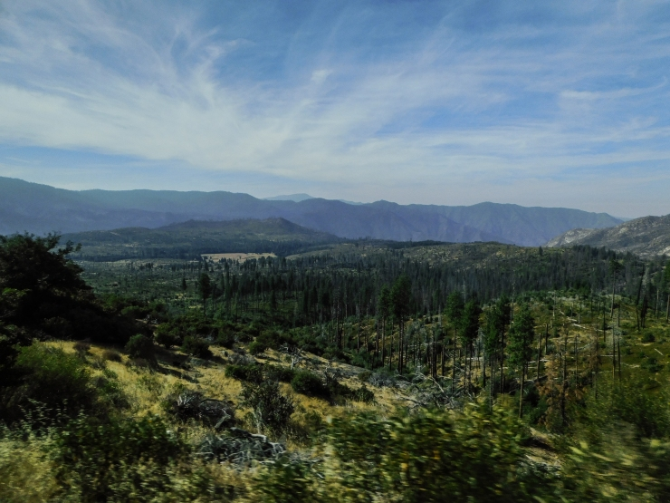 Yosemite-Intro-6