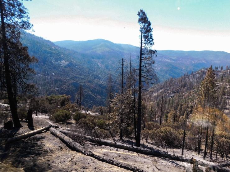 Yosemite-Intro-8