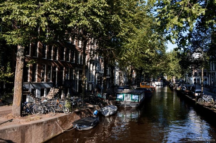 Amsterdam06-18-17