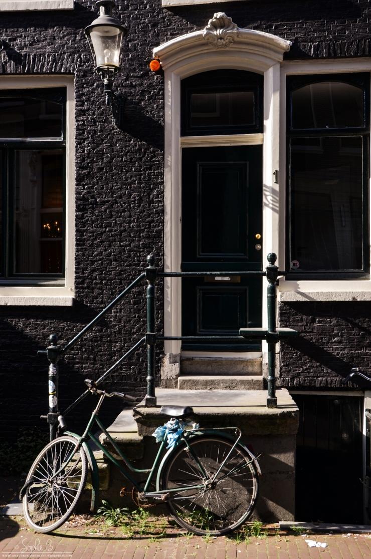 Amsterdam06-18-6