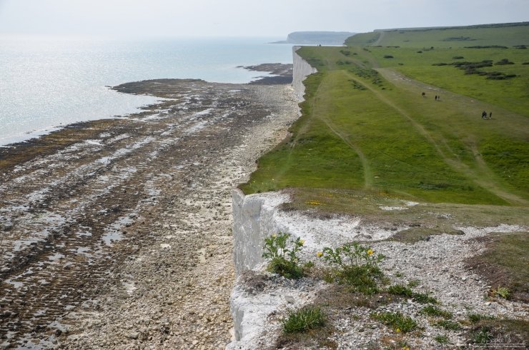 SevenSisters-13