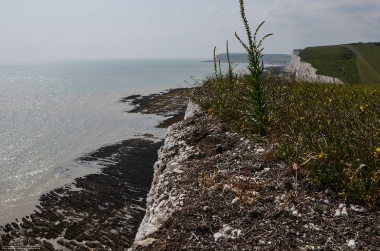 SevenSisters-8